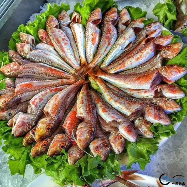 网友建议美国引进中国大厨来消灭亚洲鲤鱼,美国大厨表示抗议-7.jpg