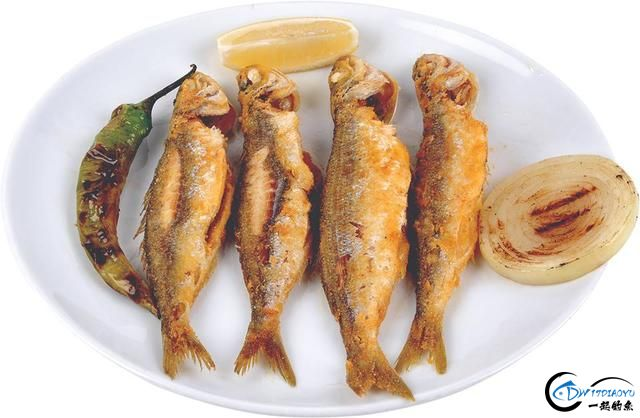 消灭美国泛滥的亚洲鲤鱼关键缺中国大厨?美国大厨表示不服气-24.jpg