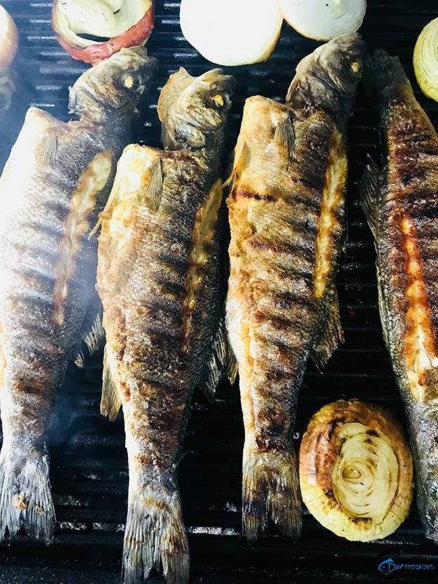 消灭美国泛滥的亚洲鲤鱼关键缺中国大厨?美国大厨表示不服气-17.jpg