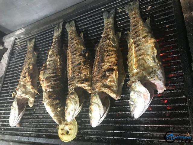 消灭美国泛滥的亚洲鲤鱼关键缺中国大厨?美国大厨表示不服气-15.jpg