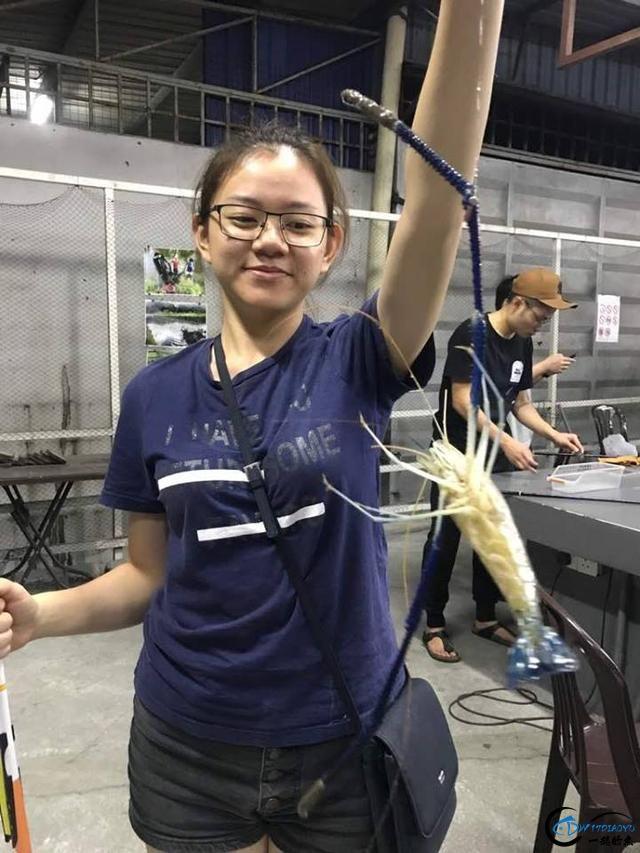 中国美女主播竟也组团去越南钓虾,这是要灭绝罗氏虾的节奏啊-8.jpg