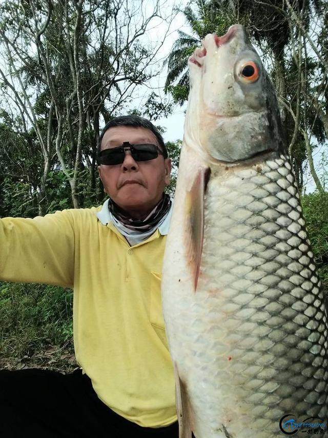 湄公河不愧是钓鱼人的天堂,各种神奇的鱼种让人眼花缭乱-2.jpg