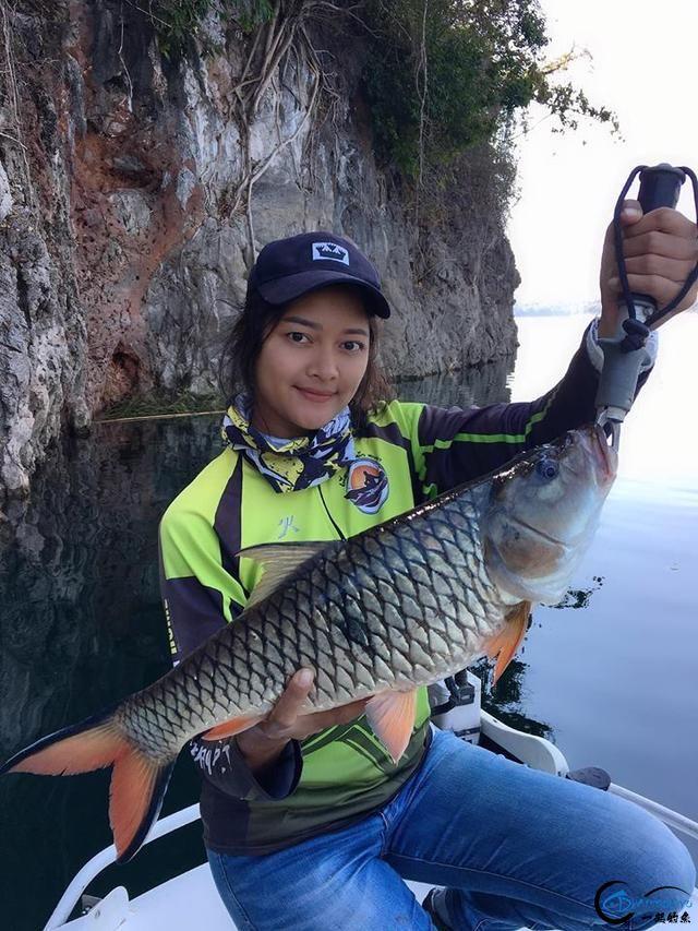 湄公河不愧是钓鱼人的天堂,各种神奇的鱼种让人眼花缭乱-1.jpg