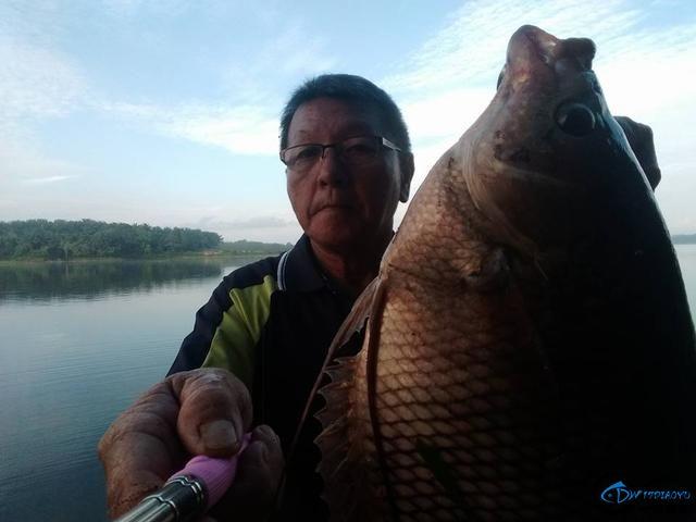 湄公河不愧是钓鱼人的天堂,各种神奇的鱼种让人眼花缭乱-7.jpg