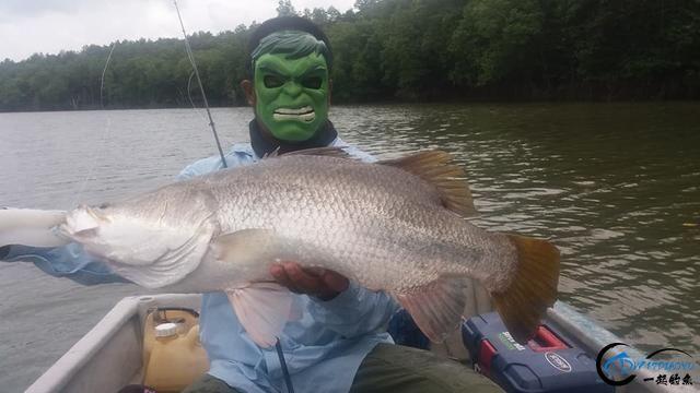 湄公河不愧是钓鱼人的天堂,各种神奇的鱼种让人眼花缭乱-17.jpg