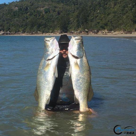 将维多利亚湖200多种鱼吃灭门的绝世凶鱼才是钓鱼人终极目标-21.jpg