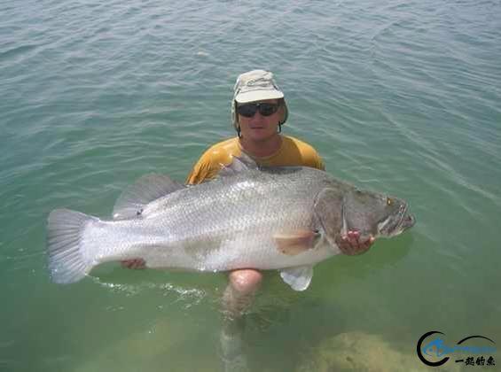 将维多利亚湖200多种鱼吃灭门的绝世凶鱼才是钓鱼人终极目标-23.jpg