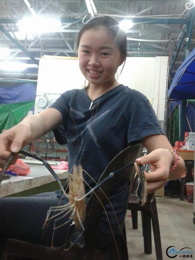 中国美女钓虾团远征越南罗氏虾,这钓获势必引发国内钓虾狂潮-6.jpg
