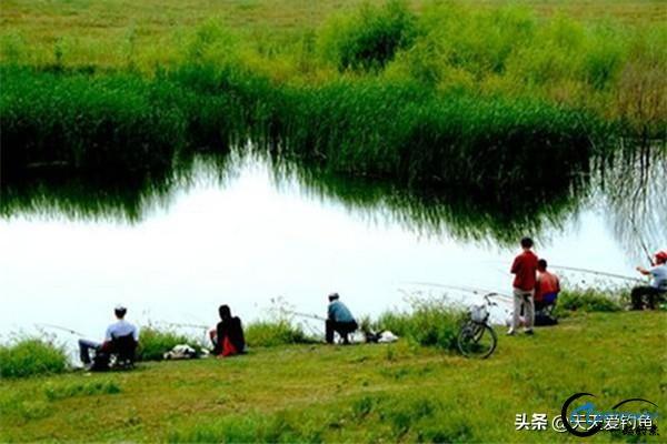 春季野钓的实用钓鱼谚语大全-1.jpg