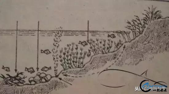 野河钓鱼怎么找鱼窝,图示讲解鱼的必经之道-2.jpg