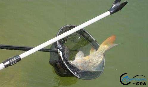 出门钓鱼,请做好这些准备,免得临到钓点手忙脚乱-4.jpg