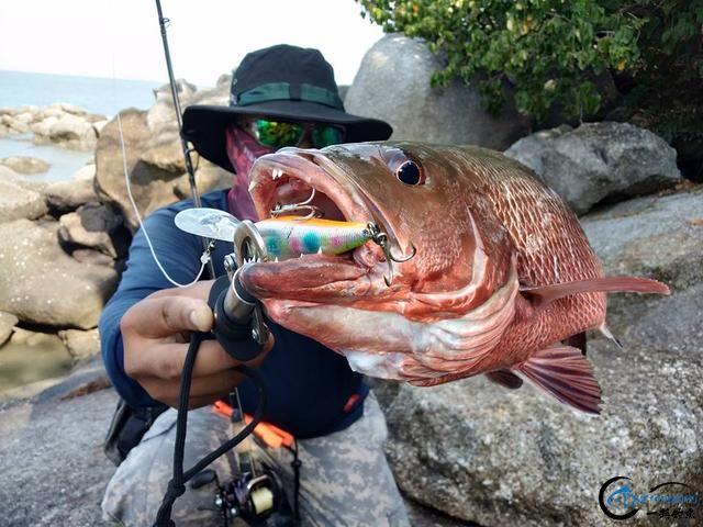 海钓就是一个坑,可是却还有无数的钓鱼人前仆后继的往前冲!-6.jpg