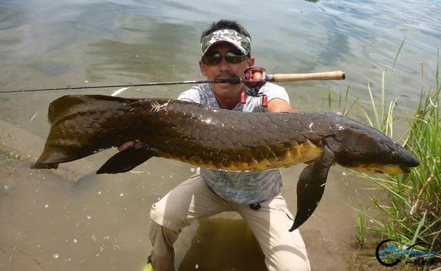 澳洲肺鱼是钓鱼人最奢侈的梦,就算杰瑞米维德都无法抵御诱惑-14.jpg