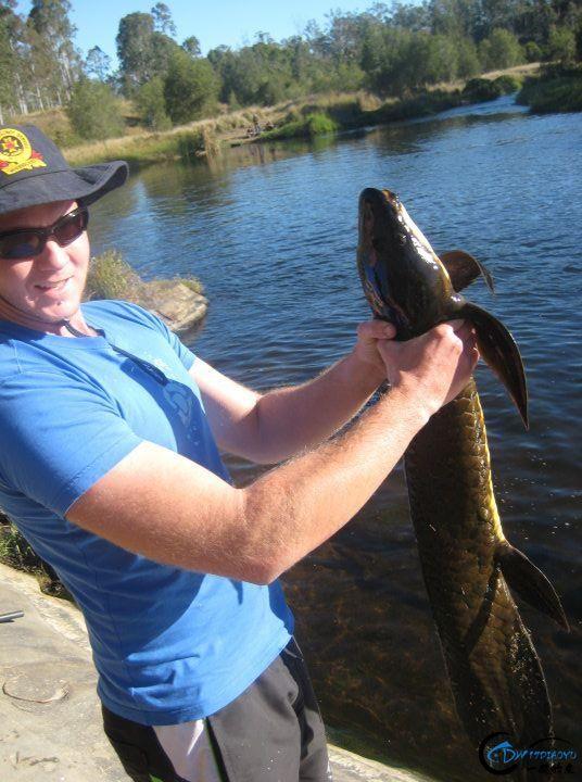 澳洲肺鱼是钓鱼人最奢侈的梦,就算杰瑞米维德都无法抵御诱惑-16.jpg