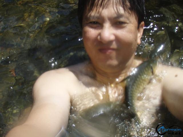 国外的鱼为啥就这么傻?竟然都不怕人,还给人做免费的鱼SPA-11.jpg