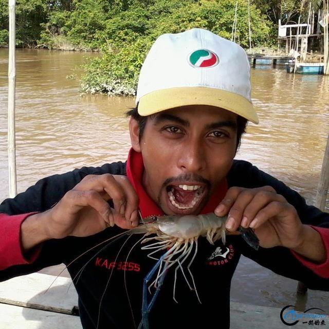 中国钓友湄公河狠狠的教训了一下湄公河泛滥的罗氏虾,真过瘾-5.jpg