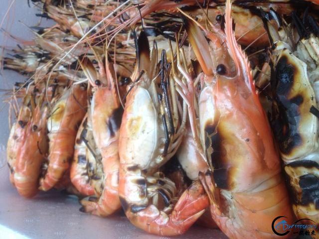 中国钓友湄公河狠狠的教训了一下湄公河泛滥的罗氏虾,真过瘾-26.jpg