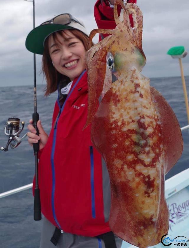 又一波年轻人中了海钓的毒,疯狂海钓鱿鱼和乌贼,渔获太牛了-2.jpg