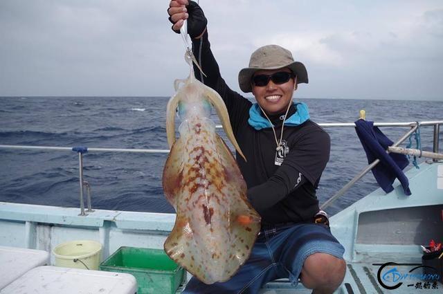 又一波年轻人中了海钓的毒,疯狂海钓鱿鱼和乌贼,渔获太牛了-17.jpg