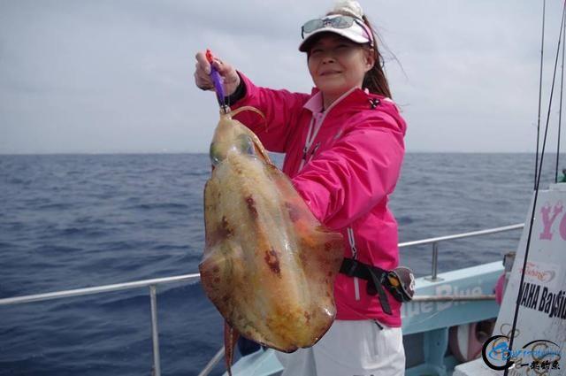 又一波年轻人中了海钓的毒,疯狂海钓鱿鱼和乌贼,渔获太牛了-18.jpg