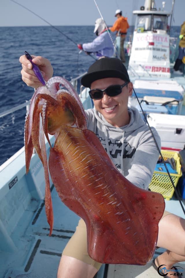 又一波年轻人中了海钓的毒,疯狂海钓鱿鱼和乌贼,渔获太牛了-9.jpg