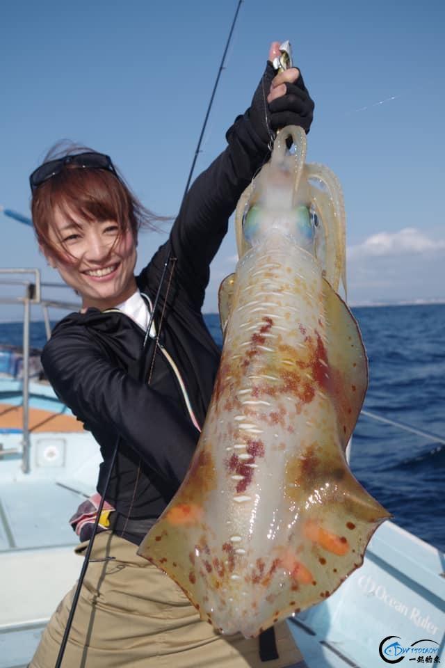 又一波年轻人中了海钓的毒,疯狂海钓鱿鱼和乌贼,渔获太牛了-4.jpg