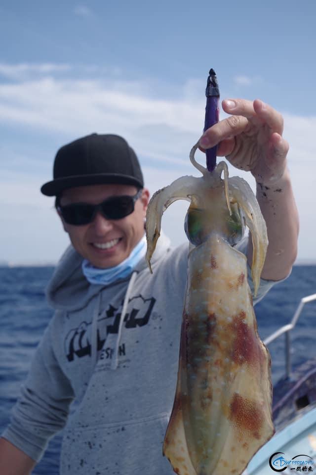 又一波年轻人中了海钓的毒,疯狂海钓鱿鱼和乌贼,渔获太牛了-6.jpg
