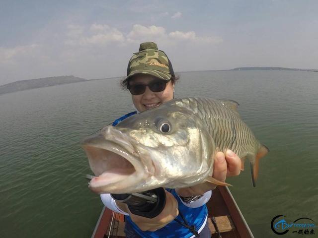 泰国秋兰湖真的是钓鱼人的天堂,鱼多的只能用泛滥来形容了-1.jpg