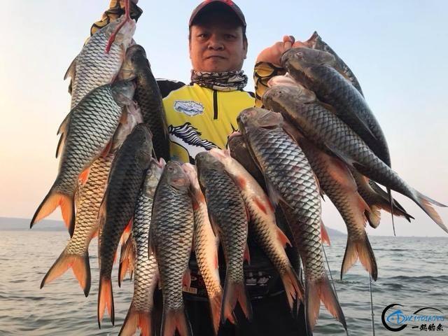 泰国秋兰湖真的是钓鱼人的天堂,鱼多的只能用泛滥来形容了-7.jpg