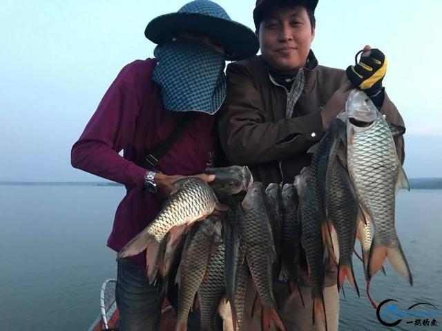 泰国秋兰湖真的是钓鱼人的天堂,鱼多的只能用泛滥来形容了-9.jpg