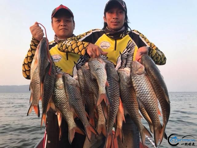 泰国秋兰湖真的是钓鱼人的天堂,鱼多的只能用泛滥来形容了-8.jpg