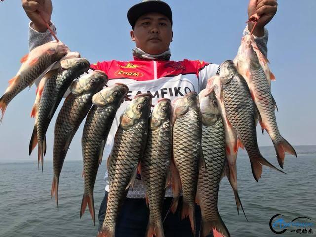 泰国秋兰湖真的是钓鱼人的天堂,鱼多的只能用泛滥来形容了-12.jpg