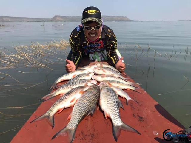 泰国秋兰湖真的是钓鱼人的天堂,鱼多的只能用泛滥来形容了-30.jpg
