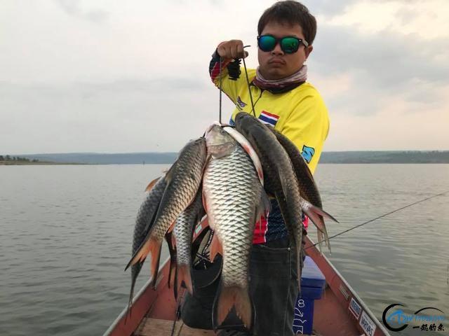 泰国秋兰湖真的是钓鱼人的天堂,鱼多的只能用泛滥来形容了-27.jpg