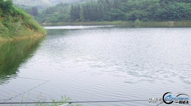春季水库钓鲤鱼的三个秘诀,想多钓鱼的你看过来,建议收藏-2.jpg