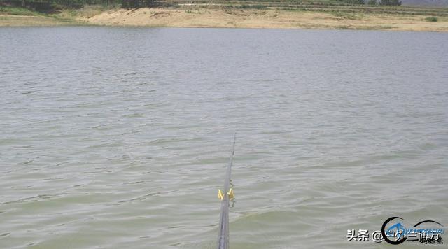 春季水库钓鲤鱼的三个秘诀,想多钓鱼的你看过来,建议收藏-4.jpg