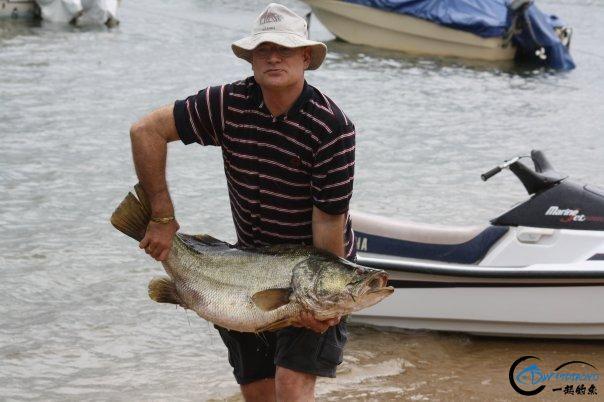 曾经是泛滥成灾的入侵鱼种,结果惨被吃成依靠政府保护的鱼种-25.jpg