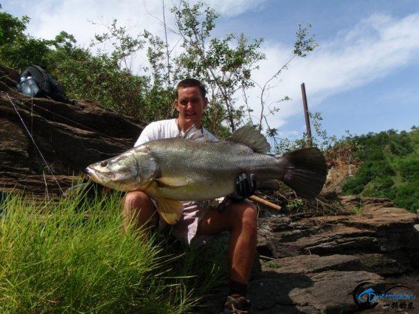 曾经是泛滥成灾的入侵鱼种,结果惨被吃成依靠政府保护的鱼种-30.jpg