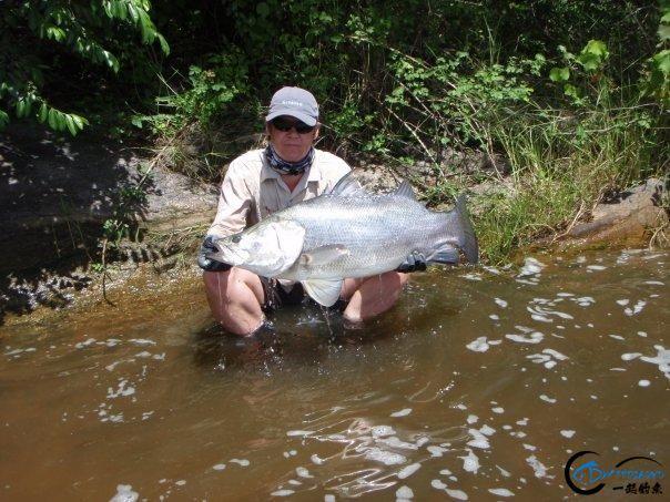 曾经是泛滥成灾的入侵鱼种,结果惨被吃成依靠政府保护的鱼种-33.jpg