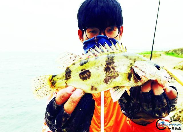 钓鳜鱼的好时节可不能错过,野生大鱼一条接着一条……-1.jpg