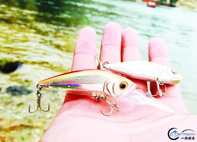 钓鳜鱼的好时节可不能错过,野生大鱼一条接着一条……-14.jpg