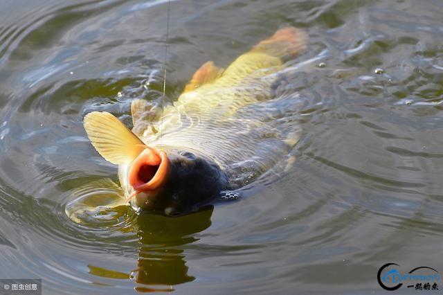 10种水情分析,切记!钓鱼不能讲随便-2.jpg