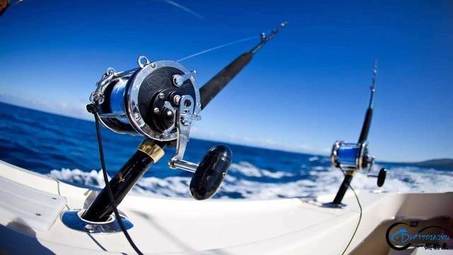 钓鱼新手请看,溜鱼很关键,一些注意事项需要掌握-1.jpg