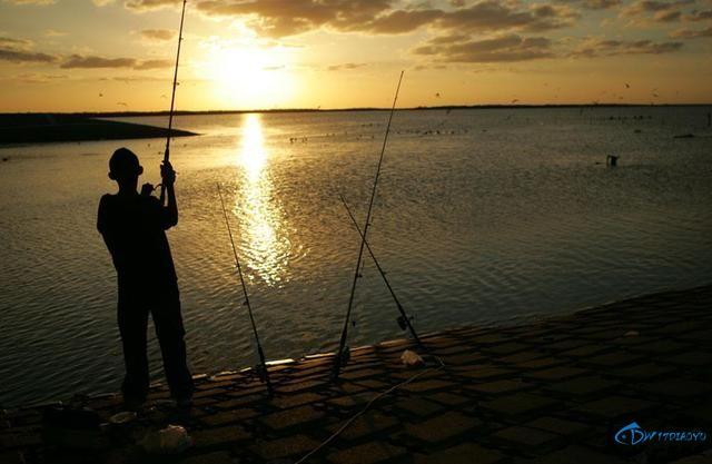钓鱼新手请看,溜鱼很关键,一些注意事项需要掌握-3.jpg