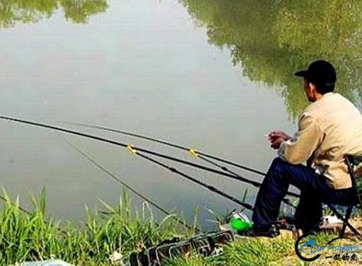 为什么有些水库禁止钓鱼,钓鱼人招谁惹谁了?看看钓友们怎么看-4.jpg