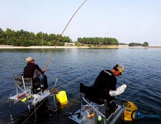 为什么有些水库禁止钓鱼,钓鱼人招谁惹谁了?看看钓友们怎么看-5.jpg