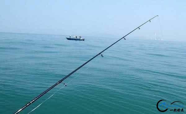 钓黑鲷是一件很有意思的事情,此鱼生性凶猛,嘴大,贪吃-6.jpg