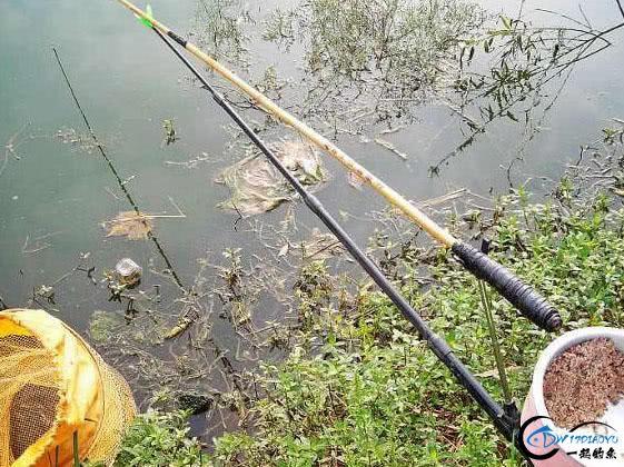 每一个钓鱼人都有一根竹竿梦:详细介绍制作过程,附图说明-1.jpg