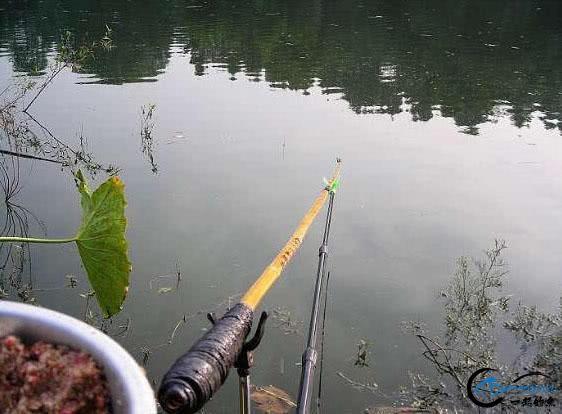 每一个钓鱼人都有一根竹竿梦:详细介绍制作过程,附图说明-3.jpg