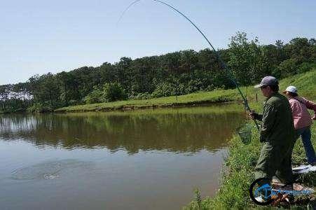 钓鱼新手遇见这些问题很正常,知道怎么回事,多练习几次就可以了-2.jpg